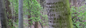 Stand by Me, engraved into a Berlin tree trunk